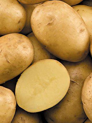 Картофель Каррера (1 кг) - 1