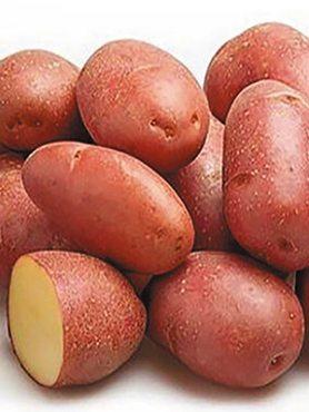 Картофель Алюэтт (1 кг)