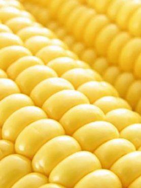Кукурудза овочева цукрова Цукровий Потік суперсолодка (5 г)