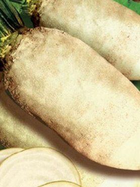Буряк кормовий Центаур Полі (1 кг)