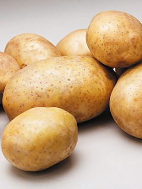 Картопля Рів'єра (5 кг)