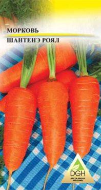 Морковь Шантенэ Ройал (50 г)