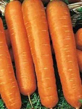 Морковь Настена (2 г)