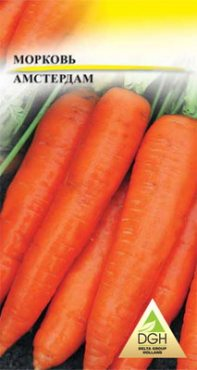 Морковь Амстердам (10 г)