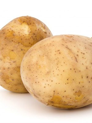 Картопля Melody (30 шт) - 1