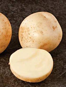 Картофель Ланорма (1 кг)
