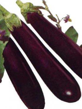 Баклажан Виолетта (1 г)