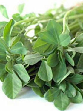 Зеленные Пажитник сенной (фенугрек) (1 г)