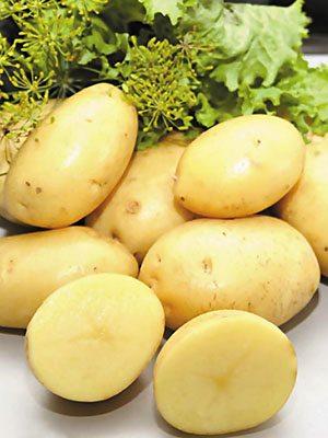 Картопля Коломба (1 кг) - 1