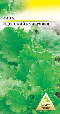 Зеленные Салат листовой Одесский кучерявец (5 г) - 1