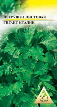 Зеленные Петрушка листовая Гигант Италии (5 г)