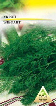Зеленные Укроп Элефант (5 г)