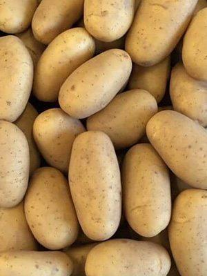Картопля Прада (1 кг) - 1