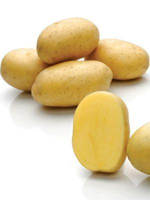 Картофель Франциска (1 кг) - 1