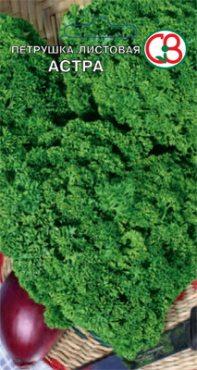 Зеленные Петрушка листовая Астра (5 г)