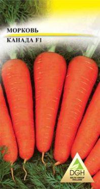 Морковь Канада F1 (50 шт)