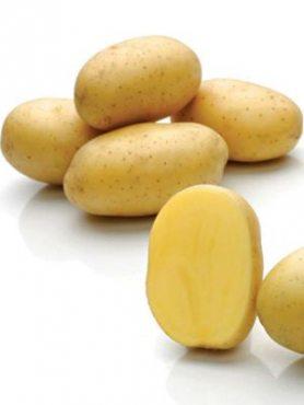 Картофель Франциска (1 кг)