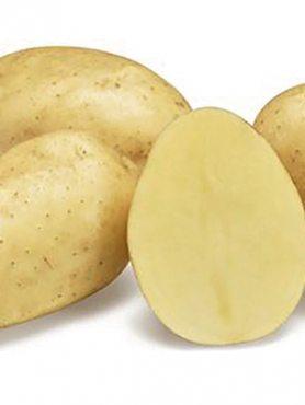 Картофель Парадизо (1 кг)