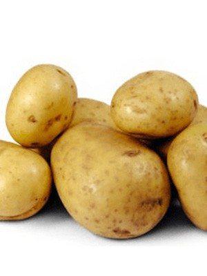 Картофель Dore (100 шт) - 1