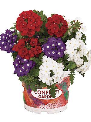 Набор Confetti Garden Linda Liberty (1 шт) - 1