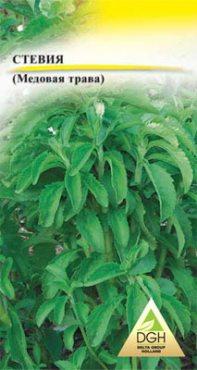 Зеленные Стевия (медовая трава) (5 шт)