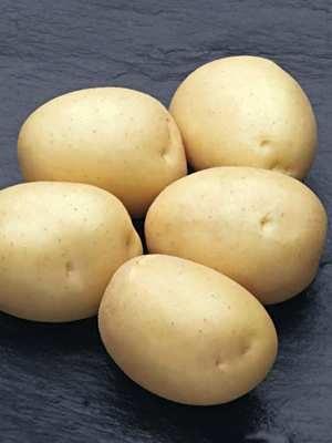 Картофель Наташа (1 кг) - 1