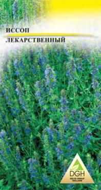 Зеленные Иссоп лекарственный Sсhira Blue (0,5 г)