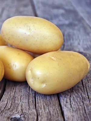 Картопля Королева Анна (5 кг) - 1