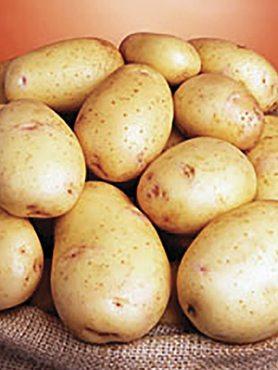 Картофель Нектар (1 кг)