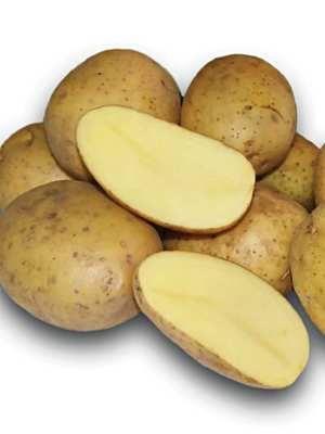 Картофель Тоскана (1 кг) - 1