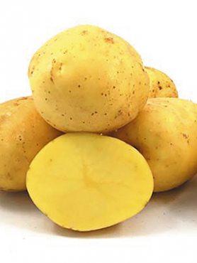 Картопля Констанс (5 кг)