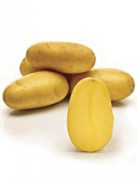 Картофель Саншайн (1 кг)