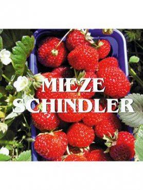 Земляника крупноплодная (клубника) Mieze Schindler (5 шт)